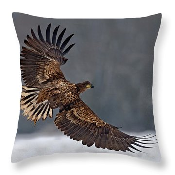 White-tailed Throw Pillows