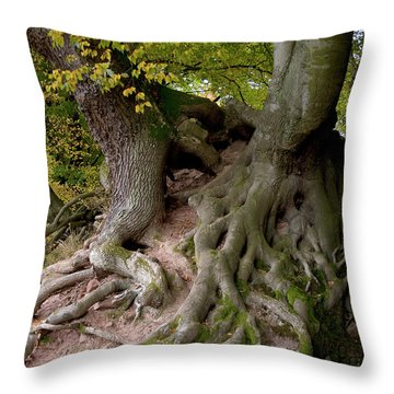 Taking Root Throw Pillow by Heiko Koehrer-Wagner