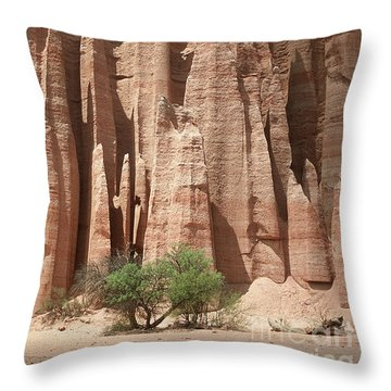 Throw Pillow featuring the photograph Talampaya Gorge Argentina by Rudi Prott