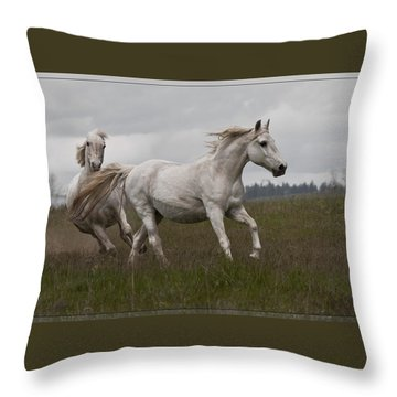 Throw Pillow featuring the photograph Talegating 5924 by Wes and Dotty Weber