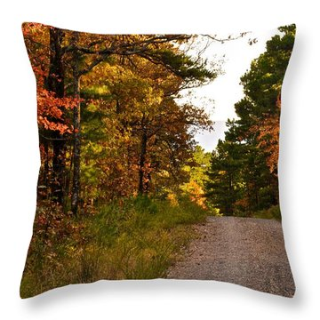 Talimena Drive 6 Throw Pillow