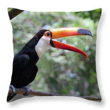 Talkative Toucan Throw Pillow