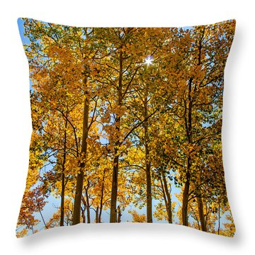Tall Aspen With Sunstar Throw Pillow