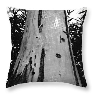Throw Pillow featuring the photograph Tall by Clare Bevan