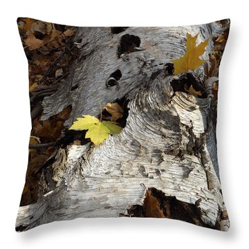 Tall Fallen Birch With Leaves Throw Pillow
