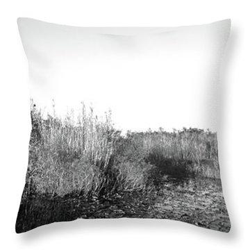 Tall Grass At The Lakeside, Anhinga Throw Pillow