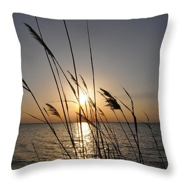 Tall Grass Sunset Throw Pillow
