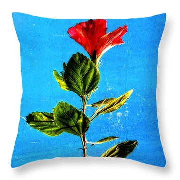 Tall Hibiscus - Flower Art By Sharon Cummings Throw Pillow by Sharon Cummings