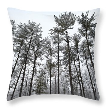 Tall Snow Covered Trees Throw Pillow by Sharon Dominick