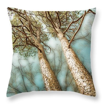 Throw Pillow featuring the photograph Tall Twin Pines by Beth Sawickie