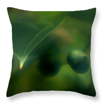 Throw Pillow featuring the photograph Tallow Tree by Travis Burgess
