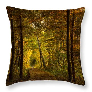 Tamarac Boardwalk Throw Pillow