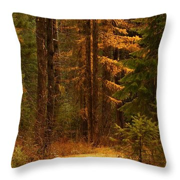 Tamarack Glow Throw Pillow