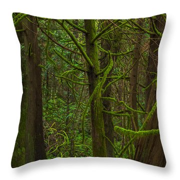 Throw Pillow featuring the photograph Tangled Forest by Jacqui Boonstra