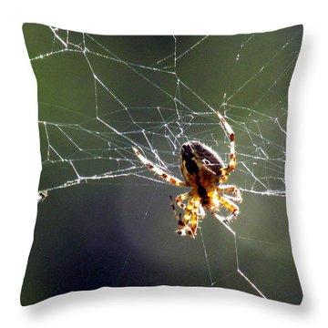 Tangled Web Throw Pillow by Bonnie Muir