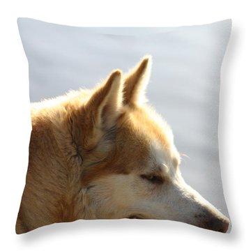 Tanka - Husky Throw Pillow by EricaMaxine  Price