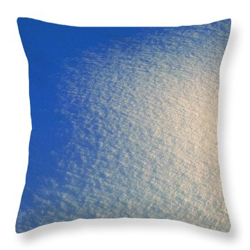Throw Pillow featuring the photograph Tao Of Snow by Mark Greenberg