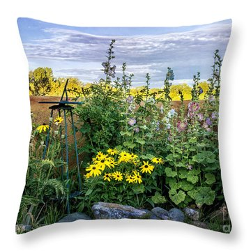 Throw Pillow featuring the photograph Taos Garden  by Terry Rowe