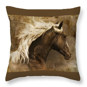 Throw Pillow featuring the photograph Taos by Priscilla Burgers