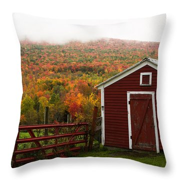 Tapestry Of Fall Colors Throw Pillow by Jeff Folger