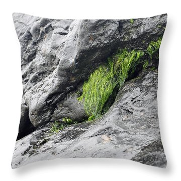 Throw Pillow featuring the photograph Tar  by Minnie Lippiatt