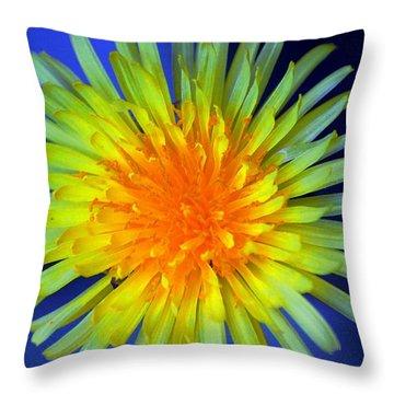 Aaron Berg Photography Throw Pillow featuring the photograph Taraxacum by Aaron Berg