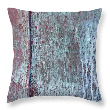 Throw Pillow featuring the photograph Tarnished Tin by Heidi Smith