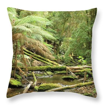 Tasmanian Rain Forest River All Profits Go To Hospice Of The Calumet Area Throw Pillow