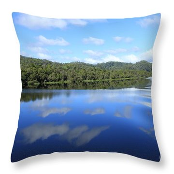 Tasmanian Reflexions All Profits Go To Hospice Of The Calumet Area Throw Pillow