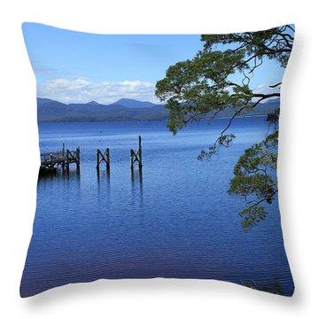 Tasmanian Stillness All Profits Go To Hospice Of The Calumet Area Throw Pillow