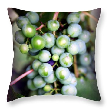 Taste Of Nature Throw Pillow by Karen Wiles