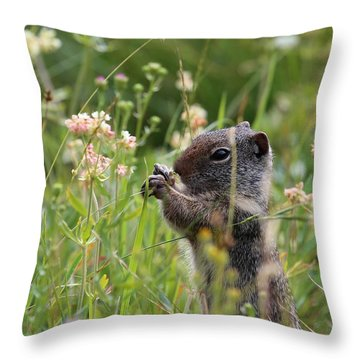 Tasty Throw Pillow by Marty Fancy