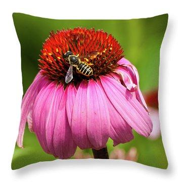 Tasty Treat Throw Pillow by Christi Kraft