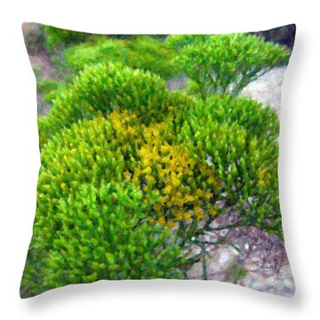 Tatalencho Throw Pillow