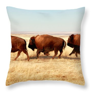 Tatanka Throw Pillow by Todd Klassy