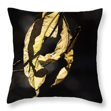Tattered Leaf Throw Pillow by Fran Gallogly