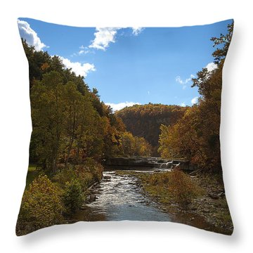 Throw Pillow featuring the photograph Taughannock Lower Falls Ithaca New York by Paul Ge