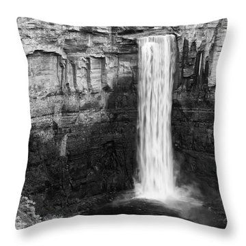 Taughannock Monochrome II Throw Pillow