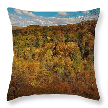 Throw Pillow featuring the photograph Taughannock River Canyon In Colorful Fall Ithaca New York II by Paul Ge