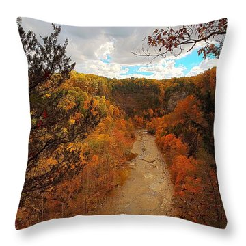 Throw Pillow featuring the painting Taughannock River Canyon In Colorful Fall Ithaca New York IIi by Paul Ge