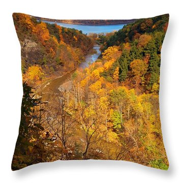 Throw Pillow featuring the photograph Taughannock River Canyon In Colorful Fall Ithaca New York by Paul Ge