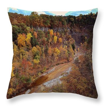 Throw Pillow featuring the painting Taughannock River Canyon In Colorful Fall Ithaca New York V by Paul Ge