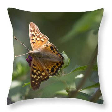 Tawny Emperor On Hibiscus Throw Pillow by Shelly Gunderson