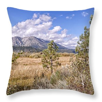 Throw Pillow featuring the photograph Taylor Creek Panorama by Jim Thompson