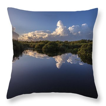 Taylor Slough Throw Pillow by Jonathan Gewirtz