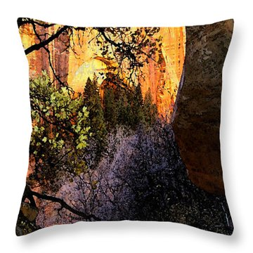 Taylor's 1 Throw Pillow