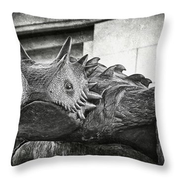Tcu Horned Frog 2014 Throw Pillow