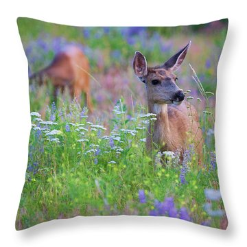 Tea Party Throw Pillow by Jim Garrison