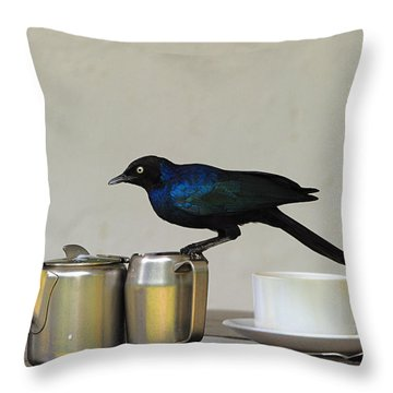 Tea Time In Kenya Throw Pillow by Tony Beck