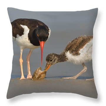 Throw Pillow featuring the photograph Teaching The Young by Jerry Fornarotto